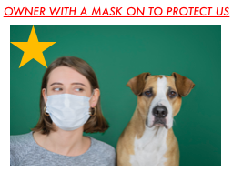 Owner with mask on to protect staff