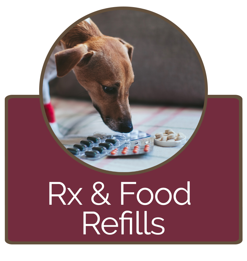 Request Prescription and Food Refills at BVH